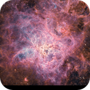 Tarantula Nebula - NGC 2070 HORGB by Insight Observatory! Please see starless version :-),                                Daniel Nobre