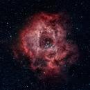 Rosette Nebula,                                Pablo Gazmuri