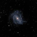 M83,                                Vijay Vaidyanathan