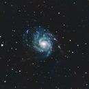 M101 The Pinwheel Galaxy,                                Eddie Pons