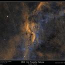 DBW 111, The Propeller Nebula,                                rflinn68