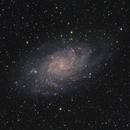 Triangulum Galaxy M33,                                Swanny