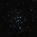Beehive Open Star Cluster,                                Ed Albin