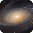 Bode's Galaxy (Messier 81) with C14,                                Henning Schmidt