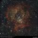 Rosette Nebula,                                Enol Matilla