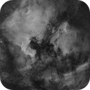 Classic Ha mono of NAN & Pelican Nebulae - 6 panel mosaic,                                Barry Wilson