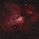 Swan Nebula,                                Dean Salman