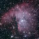 NGC 281 Pacman Nebula,                                Brandon Tackett