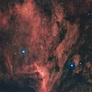 Pelican Nebula - IC 5070,                                Delberson