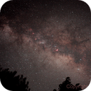 Milky way above the trees 02,                                Michele Russo