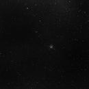 M11 - Wild Duck cluster,                                Luca Billeri