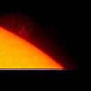 Sun, prominences, 14 Luglio 2020,                                Ennio Rainaldi