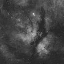 IC 1318 - The Gamma Cygni Nebula,                                Julien Lana