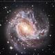 Southern Pinwheel Galaxy (M83),                                Lopes Maicon