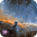 Horse Head Nebula B 33 SHO,                                llolson1