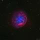 Abell 31 •Sh2-290 Planetary Nebula in HaOIIIRGB,                                Douglas J Struble