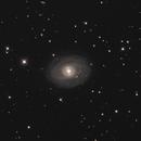 NGC1398,                                Mark