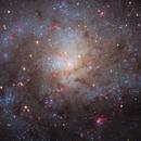 M33, The Triangulum Galaxy and the Nova M33N 2015-12a (5 panel mosaic),                                Ruben Barbosa