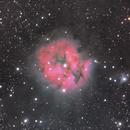 IC 5146 Coccoon,                                maudy2u