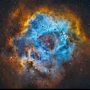 Rosette Nebula NGC2237,                                Stan Smith