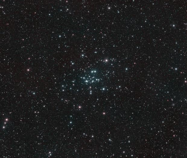 M34,                                Trevor Gunderson