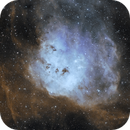 IC410 Tadpoles Nebula in Hubble palette,                                Anders Quist Hermann