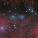 Van Den Bergh 132 and NGC6914,                                Albert van Duin