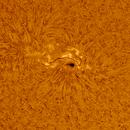 Active region 12824 (h alpha),                                Robert Schumann