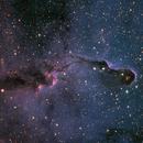 Elephant Trunk Nebula (IC1396),                                Chris