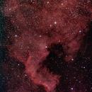 NGC 7000 North America Nebula,                                brumtaffy