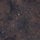 IC 1396 - Elephant's Trunk Nebula,                                Romain Perron