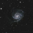 M101 The Pinwheel,                                cclark