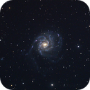 M101,                                BlueApoc