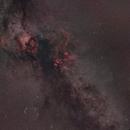 Cygnus in the Milky Way,                                Florian Rünger