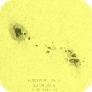 SunSpot 12615,                                Martin (Marty) Wise