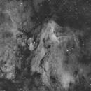 IC5067 Pelican nebula Ha,                                lukfer
