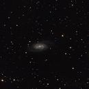 NGC 2903,                                RolfW