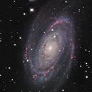 M81 LHA-RGB,                                Stéphan & Fils