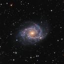 NGC 2997,                                Lee Borsboom