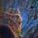 IC 5070 The Pelican Nebula,                                Alex Woronow