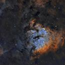 NGC 7822 SHO,                                Paddy Gilliland