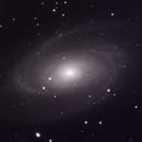 M81,                                Michael Finan