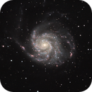 M101 LHaRGB,                                Drew Lanphere