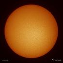 Finally, a Few Prominences!,                                Damien Cannane