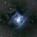 NGC 7023,                                H.Chris