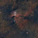 Dragones de Ara - NGC 6188,                                Guillermo Spiers