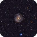 M83 - Southern Pinwheel galaxy in Hydra,                                Stellario