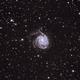 Galaxie M101,                                quigna