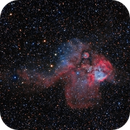 Mutant Cosmic Fish,                                Richard S. Wright...