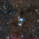 M78 from Texas,                                Scotty Bishop